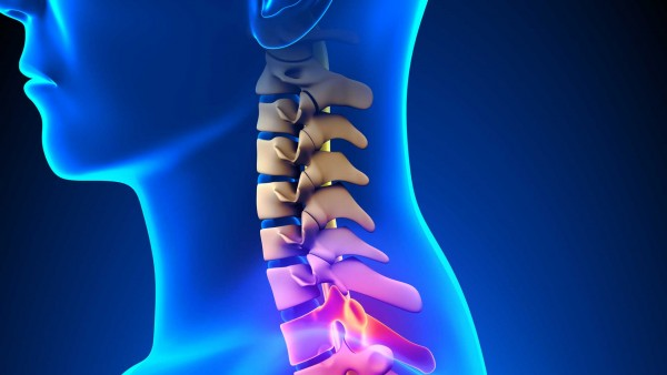 Spinal Injury Research (size: funews-syndication)