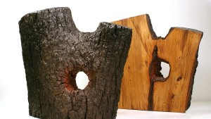 zac benson wood stump, 600 wide