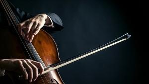 cello, sized